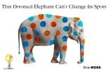 elephantcantchangespots